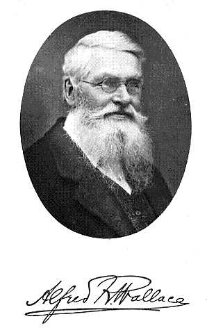 Alfred_Russel_Wallace