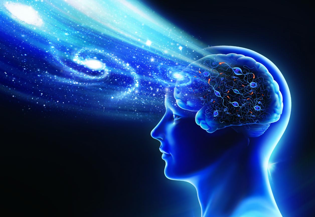 【探索10 】探索內心的小宇宙:談大腦的理論與模型