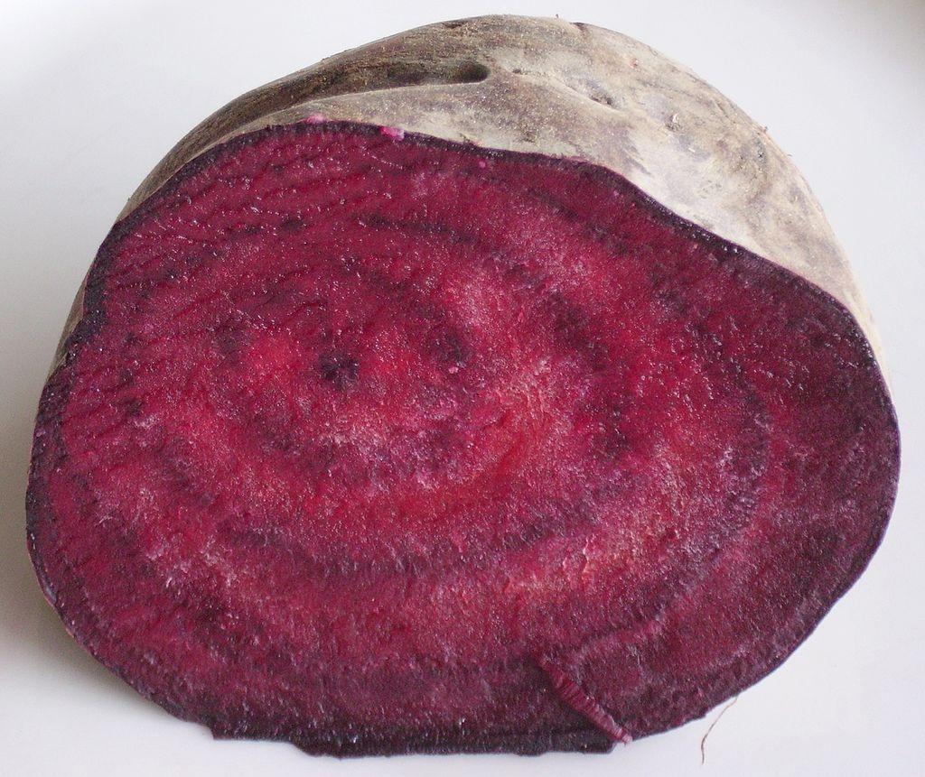 甜菜根的橫切面。圖片來源:wiki