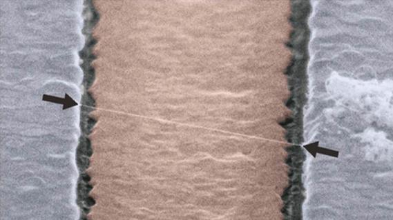 奈米碳管振盪子(Mechanical resonator),可以想像奈米碳管的震動就跟吉他的弦類似 (圖片來源:參考資料1)