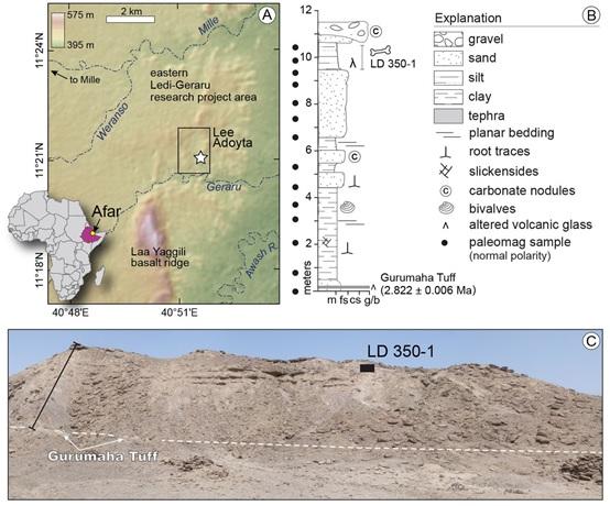 LD 350-1化石的出土地理位置和地層以及景觀(Villmoare B, et al. Science. DOI: 10.1126/science.aaa1343 (2015))
