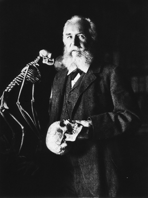 圖一:恩斯特・黑克爾(Ernst Heinrich Philipp August Haeckel, 1834-1919),德國生物學家、自然學家。畢生致力於提倡演化論。然而其謬誤百出的學說反而讓達爾文的演化論蒙上一曾陰影。相片為德國攝影家佩謝德(Nicola Perscheid)的作品。圖片取自維基百科 (Public domain)。