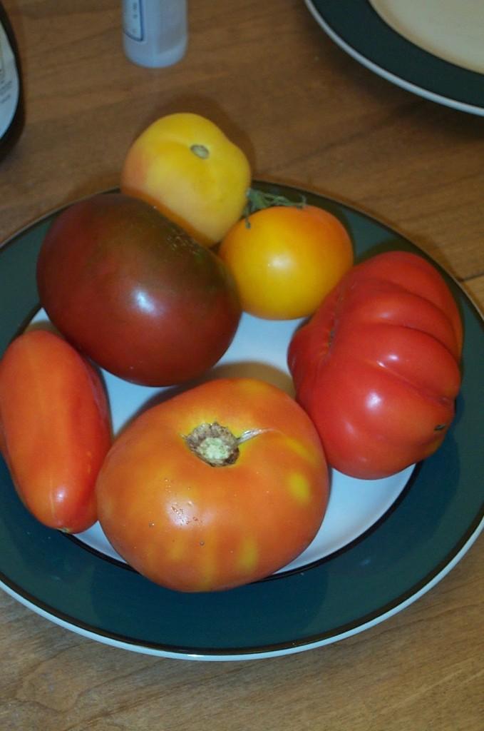 蕃茄的大小是因為子房室的數目造成的。 究竟是什麼原因造成子房室的數目變化呢? 圖片來源:wiki