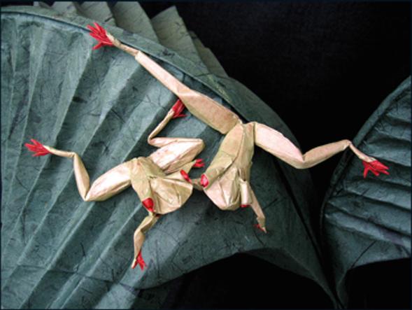 生態學家兼摺紙藝術家Bernie Peyton的樹蛙摺紙作品