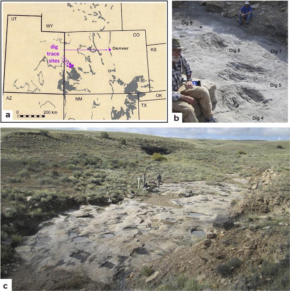 恐龍腳抓痕化石的現場(Martin G.et al. Scientific Reports, 2016; 6: 18952 DOI: 10.1038/srep18952)