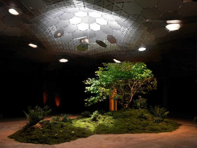 The Lowline in New York City