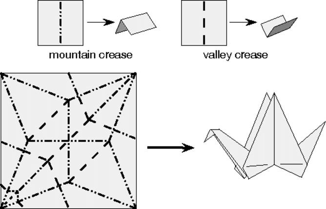 紙鶴的摺紋樣式,圖中標示山摺線及谷摺線。圖片由湯瑪斯•赫爾(Thomas Hull)提供。
