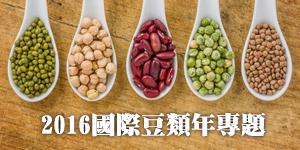 豆類年專題2