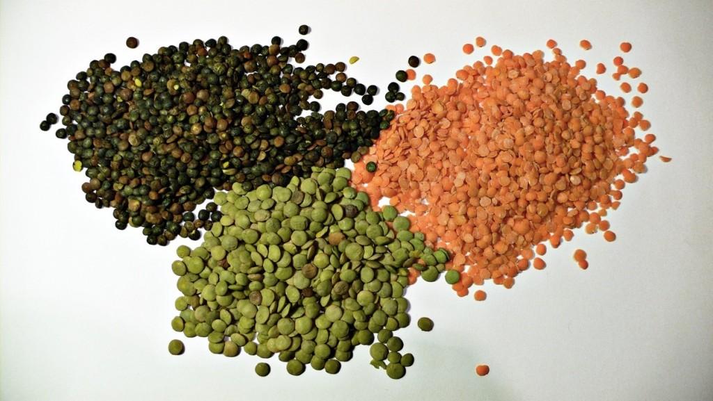 三種顏色的小扁豆(Photo credit: Justinc, CC BY-SA 2.0)
