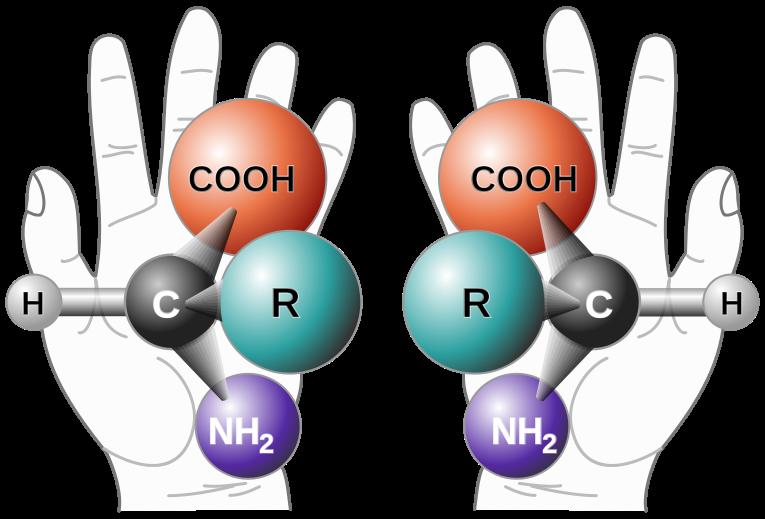 圖一: 化學中的鏡像異構物, credit: wikipedia, chirality (chemistry)