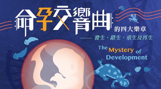 【探索講座】第16期 命孕交響曲的四大樂章