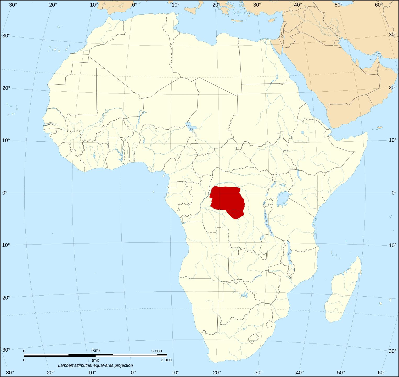 倭黑猩猩(Pan paniscus)的地理分佈