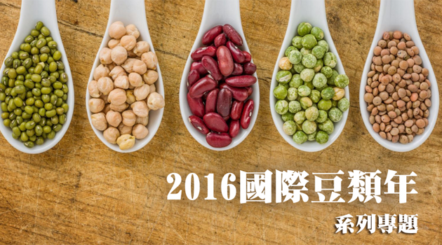 【豆類年專題】2016豆類年簡介