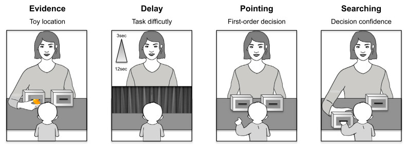 在實驗中,兒童註與實驗施測者面對面坐在桌子的兩端。施測者會把玩具當著兒童的面,放進桌上兩個箱子其中的一個。接著施測者會以布幕遮住箱子,讓箱子自兒童視線內消失一小段時間。布幕移開後,施測者會問兒童剛剛的玩具被藏在哪個箱子裡。當兒童指出其中一個箱子後,施測者會把那個箱子推給兒童。圖片來源:Goupil與Kouider(2016)論文。