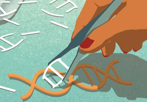 基因編輯技術CRISPR重要發展歷程的回顧