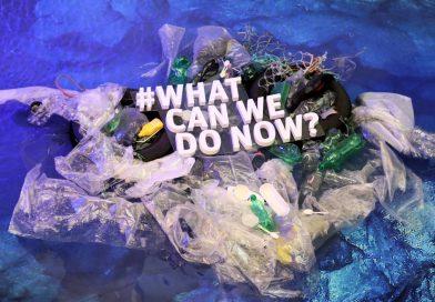 賦予塑膠袋新生命