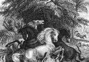 【物理史中的三月】1800 年 3 月 19 日:洪保德(Alexander von Humboldt)捕捉電鰻