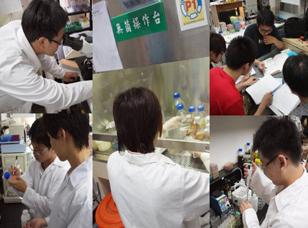 【文化大學】 99-B1-2 重組蛋白質表現、純化與應用
