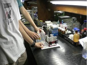 【大同大學】 99-B8 分析台灣人體中肝球蛋白分子表現亞型的分佈及與疾病的相關性研究